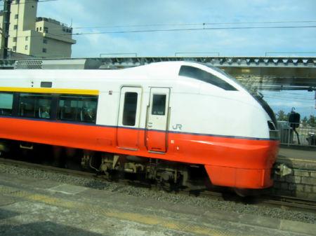 2008509k.jpg