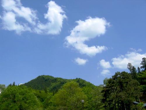 2008521-5.jpg