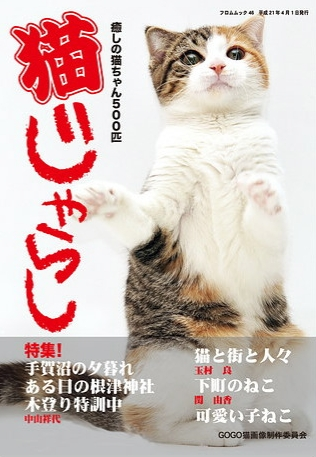 nekojarashi-1_20090721180837.jpg