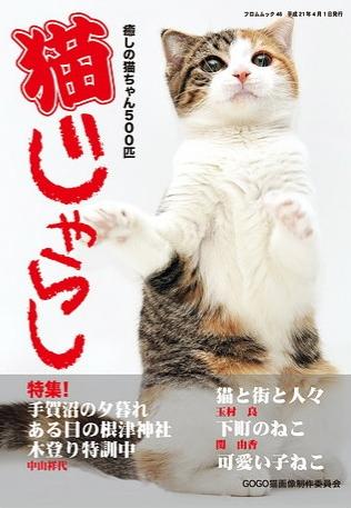 nekojarashi-1_20090721181627.jpg