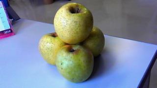 黄色いりんご2010秋