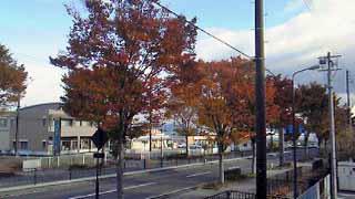 福島病院の窓から2010秋