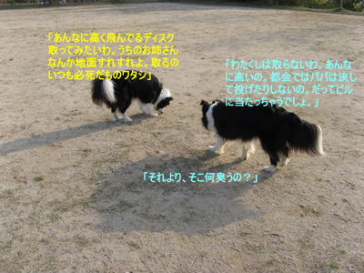 2008-4-26 006i