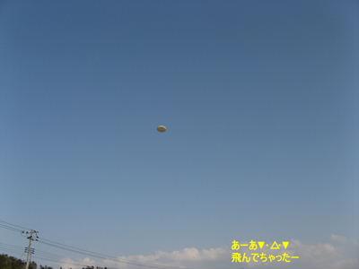 2008-4-26 012i