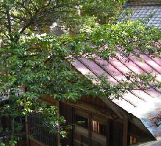 旧拝殿屋根