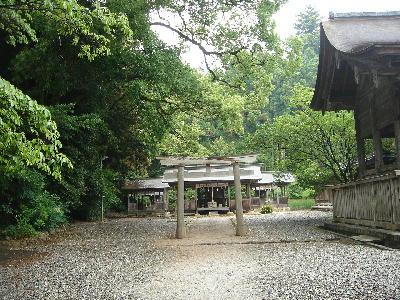 土佐神社51