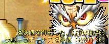 Maple_090608_000652.jpg