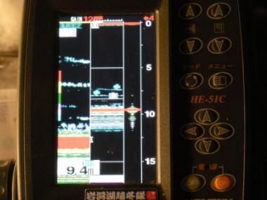 DSCN2126.jpg