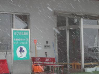 DSCN2447.jpg