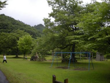 DSCN3255.jpg