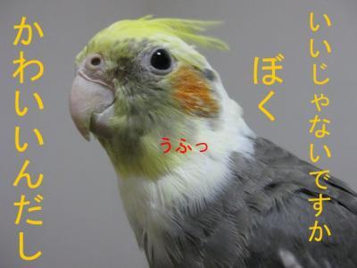 6687.jpg