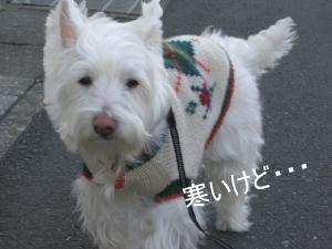mini_おじゃお正月 001