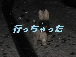 m_雪 012