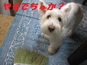 mini_掃除用具 002