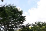 mini_丹沢湖&湘南 037