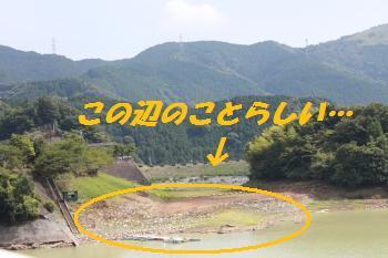 mini_丹沢湖&湘南 083