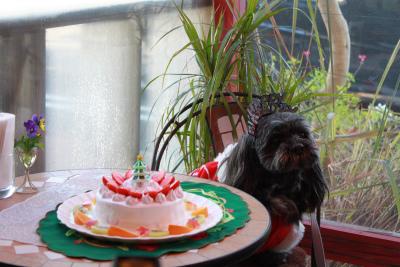 2010クリパ&お誕生会 129