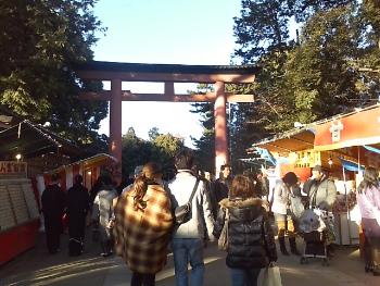氷川神社2011 001