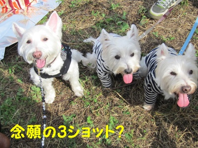 立川オフ2011 026r