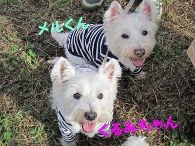 立川オフ2011 021r