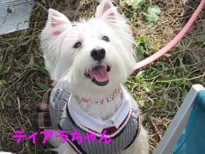 立川オフ2011 015r