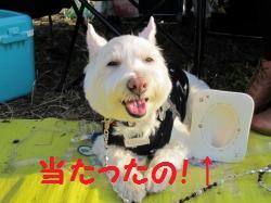 立川オフ2011 060r