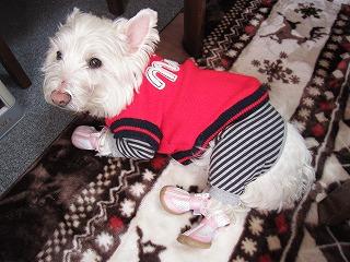 ピンクの靴   17