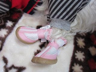 ピンクの靴 18