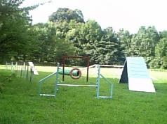 200808305.jpg