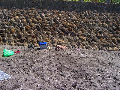 砂と同化するジャニス。