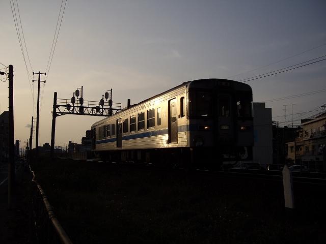 IMGP5584.jpg