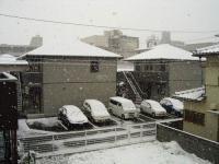 すごい雪ですw
