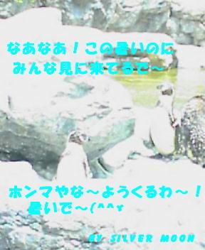 zurasia5.jpg