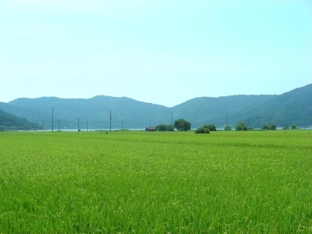 余呉湖 043