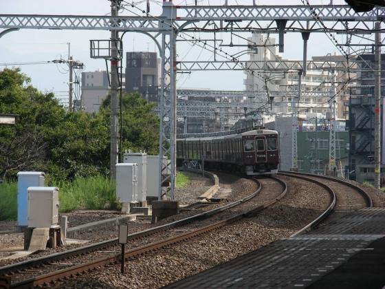 DSCN7470.jpg
