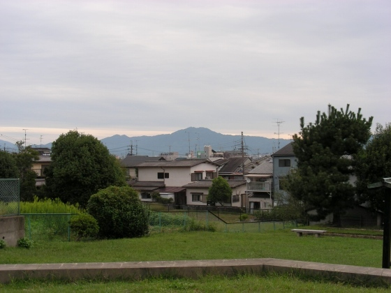 DSCN7987.jpg