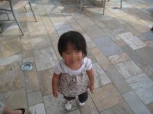 IMG_1303_convert_20080829215352.jpg