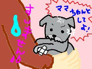 snap_jirokkosan_200810116415.jpg