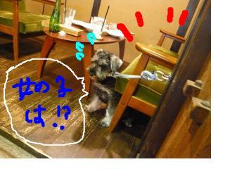 snap_jirokkosan_200810116530.jpg