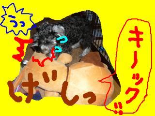snap_jirokkosan_2008103233843.jpg