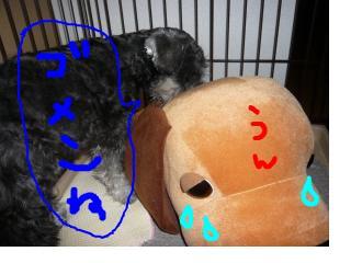 snap_jirokkosan_200810401230.jpg