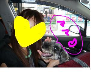 snap_jirokkosan_200810402655.jpg