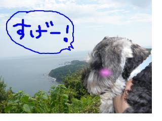 snap_jirokkosan_2008104212523.jpg