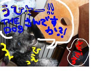 snap_jirokkosan_200890232522.jpg