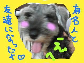 snap_jirokkosan_200890234256.jpg