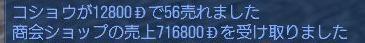 20061231221318.jpg