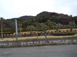 201202161.jpg