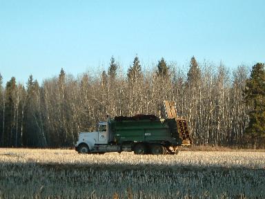 堆肥撒き20074