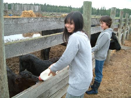 ケイコさん子牛のミルク