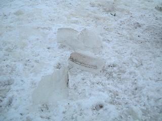 すくい出した氷